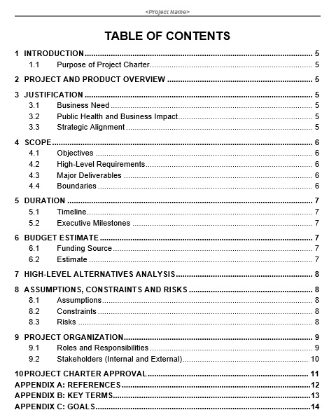 free project charter template 17