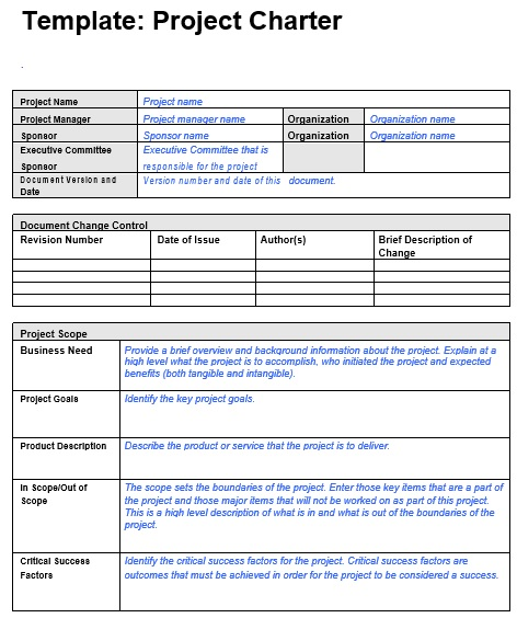 free project charter template 8