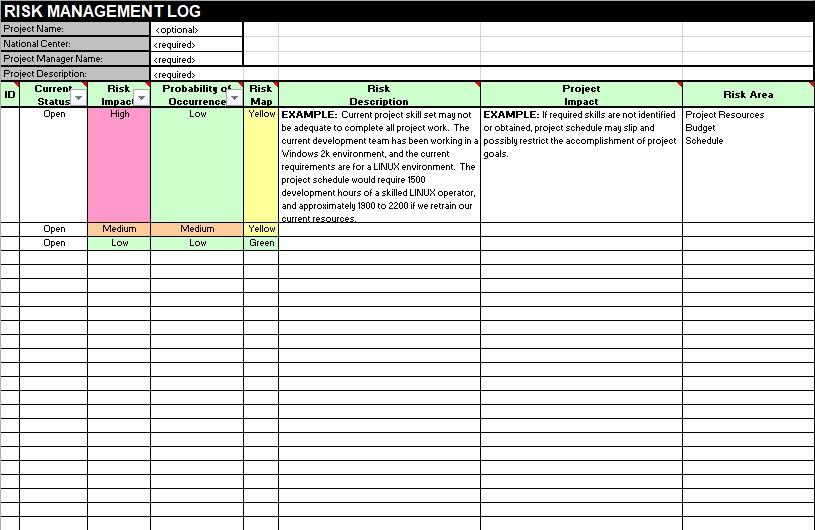 risk management log template