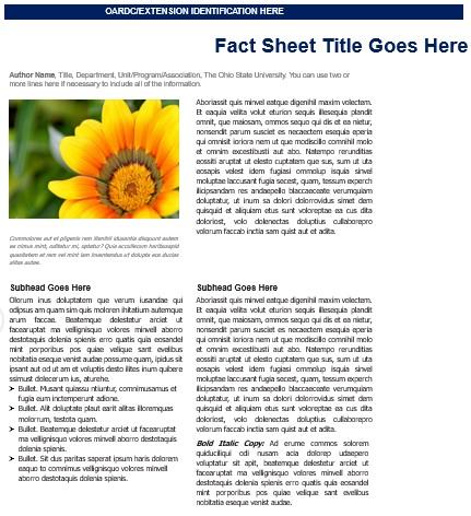 free fact sheet template 1